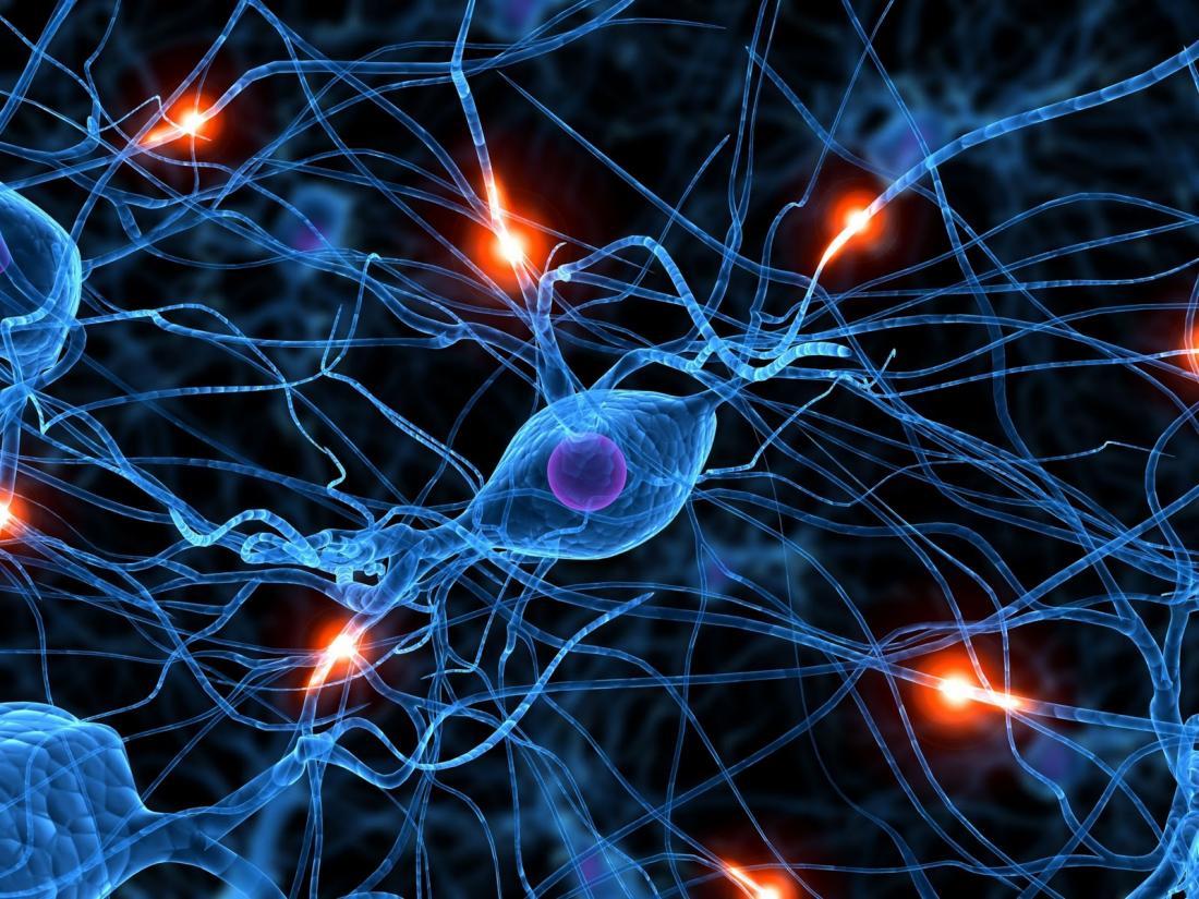 Brain synapses firing