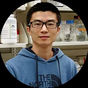 Headshot of Mingxing Zhang
